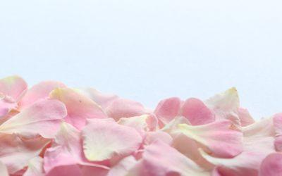 La beauté par les fleurs