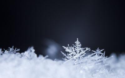 L'éclatante blancheur de l'hiver