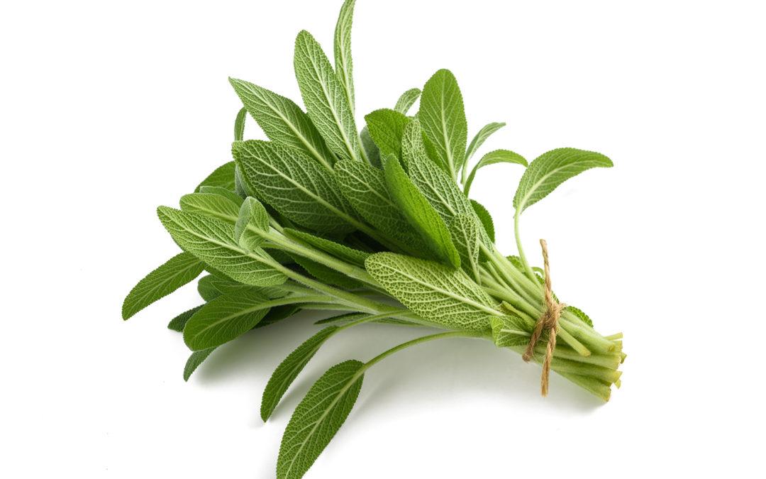 Recette de rince-bouche aux bonnes herbes